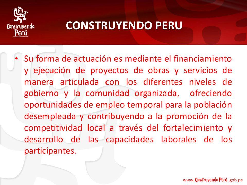 CONSTRUYENDO PERU