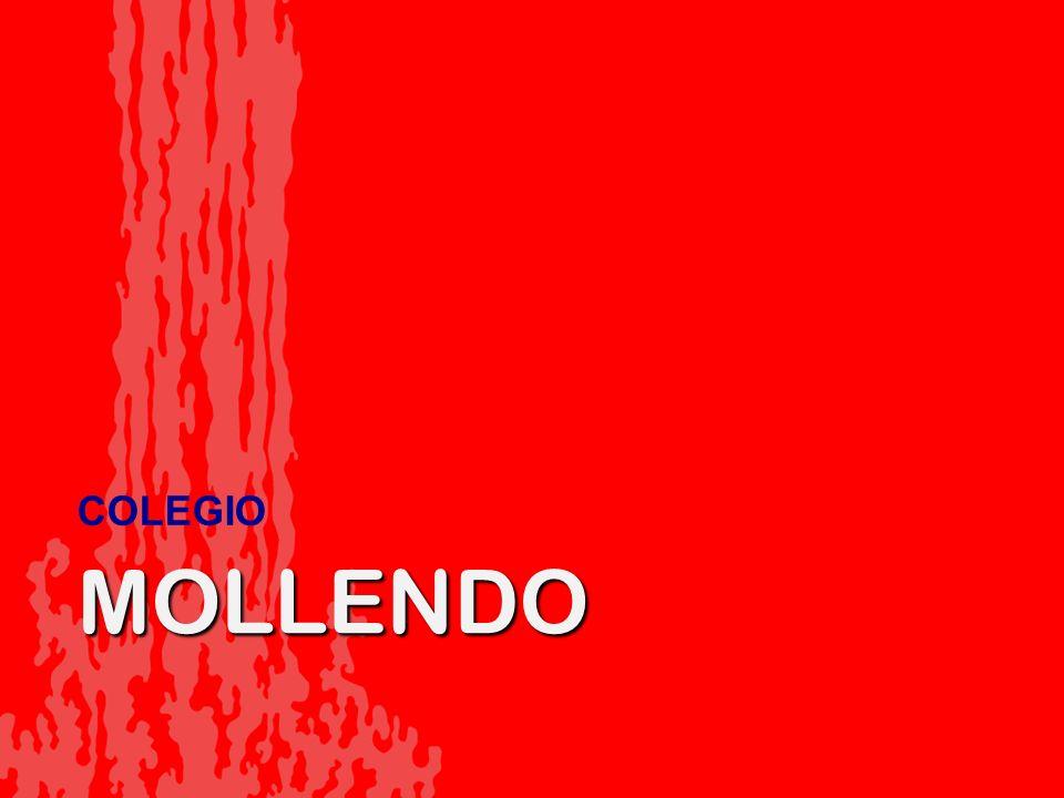 COLEGIO MOLLENDO