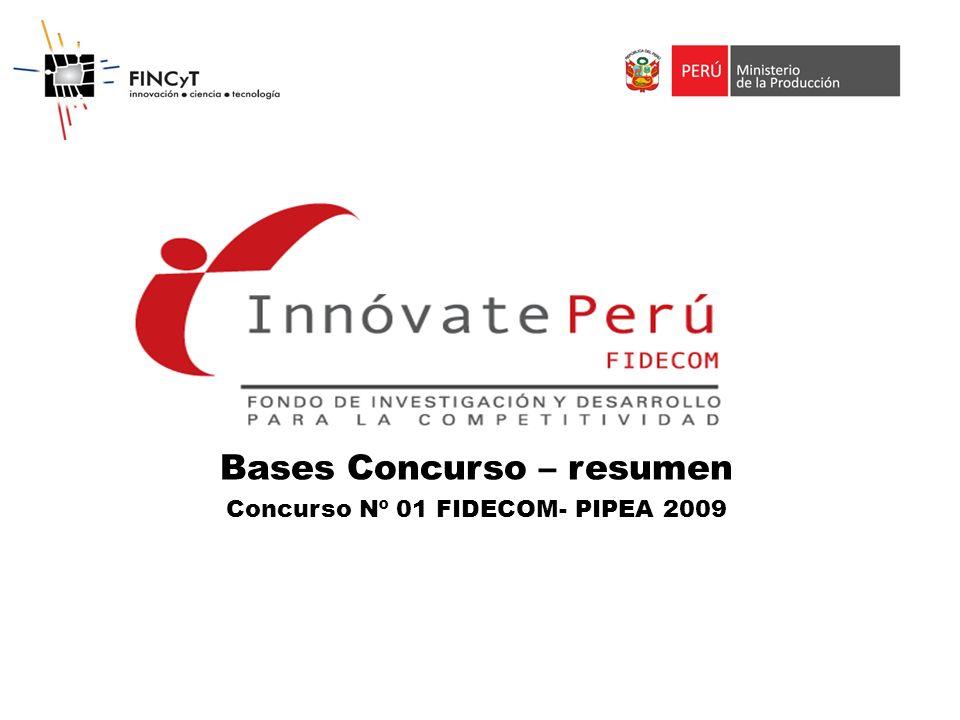 Bases Concurso – resumen Concurso Nº 01 FIDECOM- PIPEA 2009
