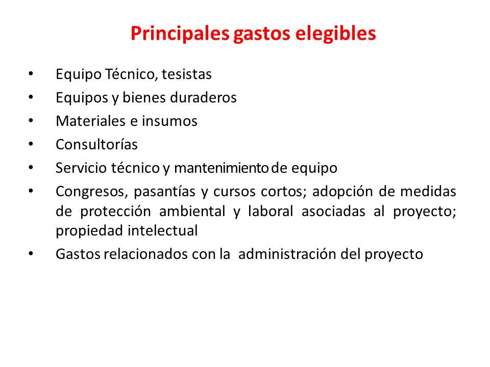 Principales gastos elegibles