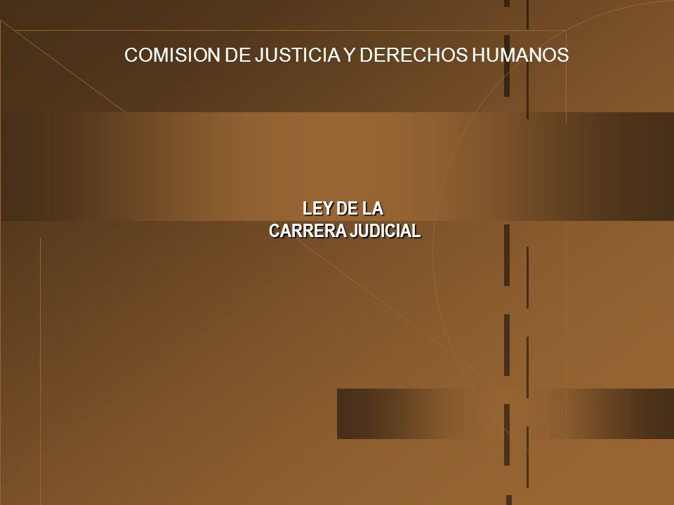 COMISION DE JUSTICIA Y DERECHOS HUMANOS