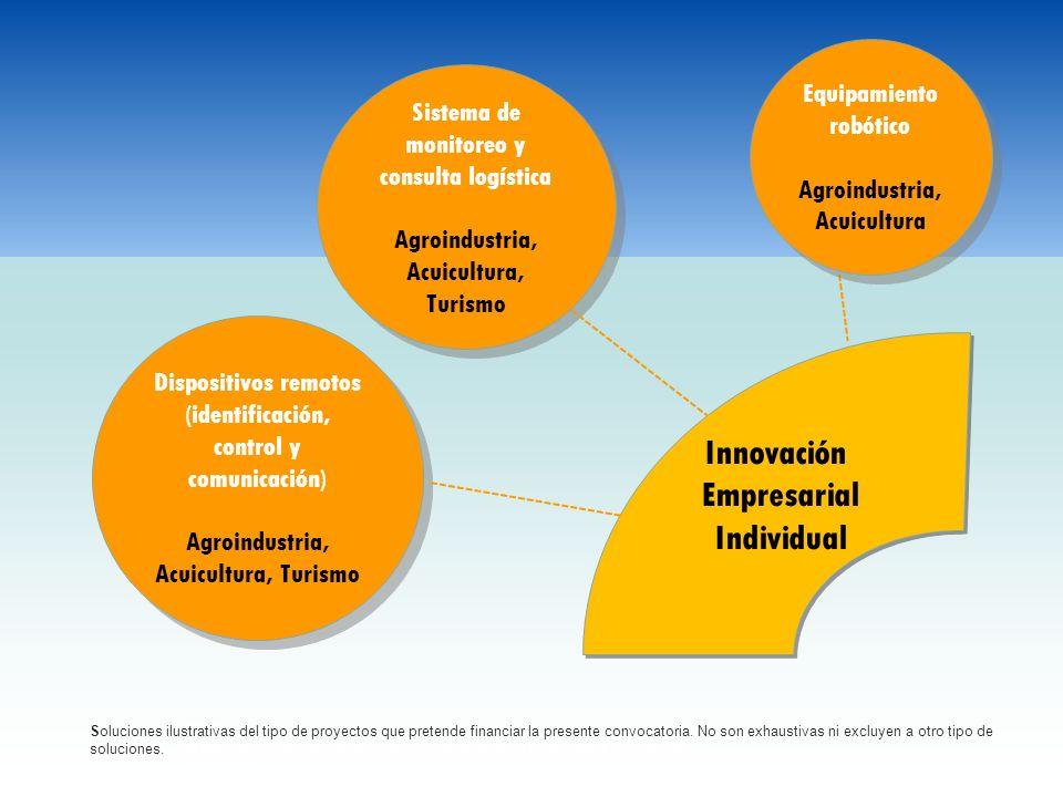 Innovación Empresarial Individual Equipamiento robótico