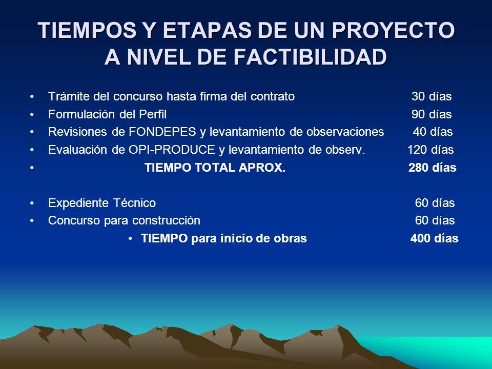TIEMPOS Y ETAPAS DE UN PROYECTO A NIVEL DE FACTIBILIDAD