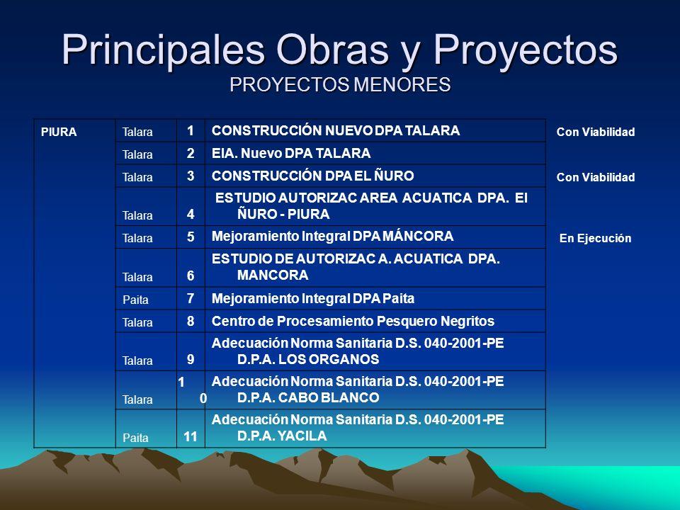 Principales Obras y Proyectos PROYECTOS MENORES