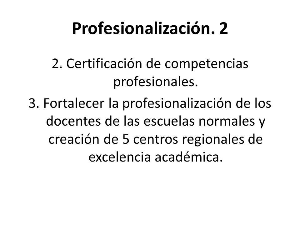 Profesionalización. 2