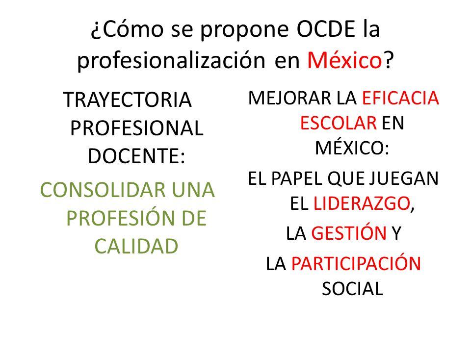 ¿Cómo se propone OCDE la profesionalización en México