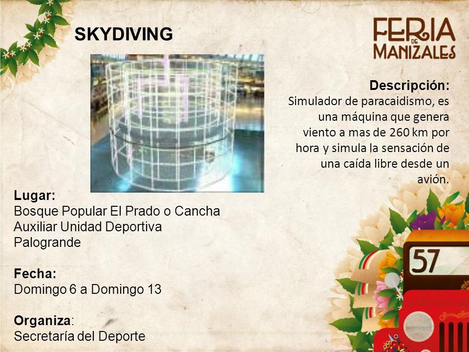 SKYDIVING Descripción:
