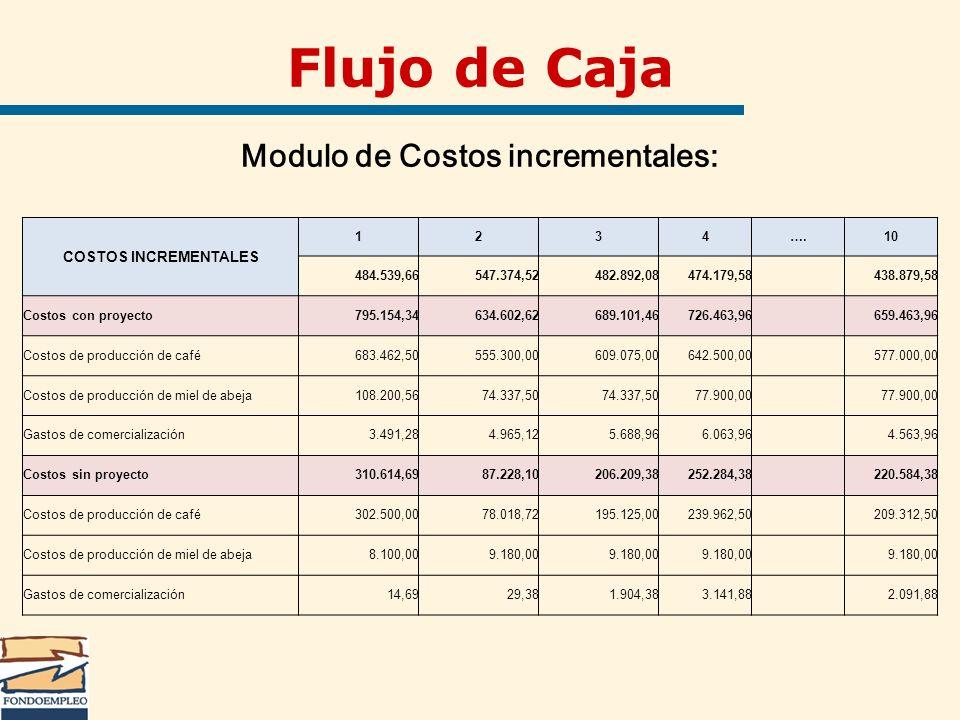 Flujo de Caja Modulo de Costos incrementales: