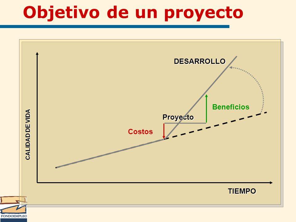 Objetivo de un proyecto