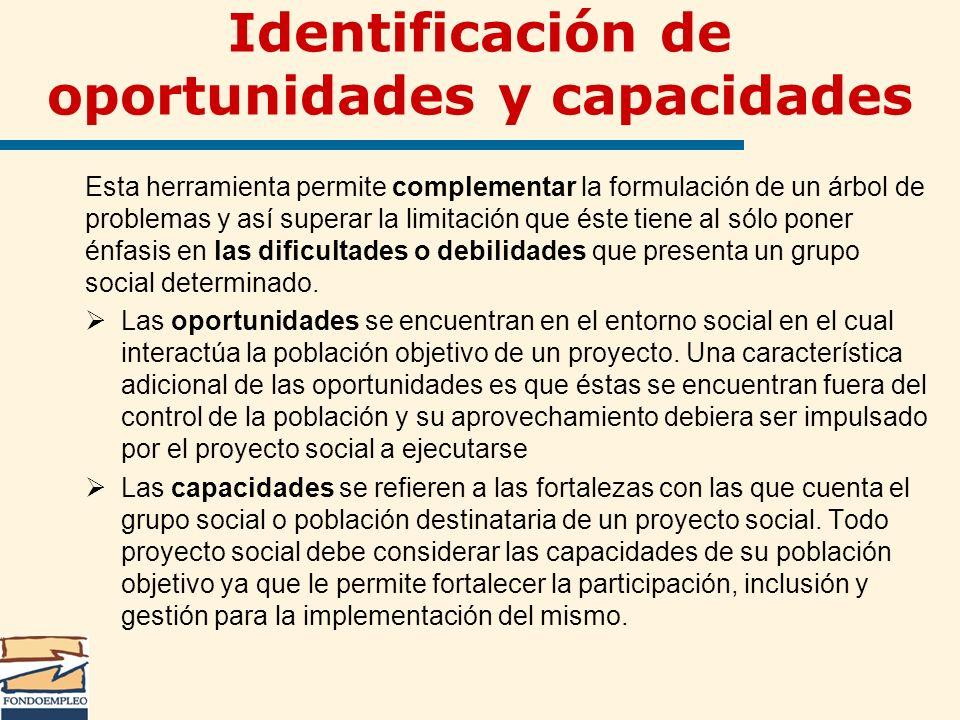 Identificación de oportunidades y capacidades