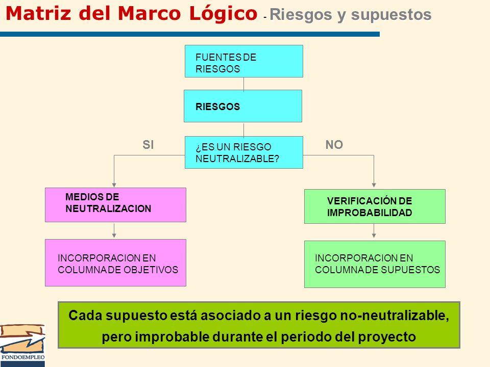 Matriz del Marco Lógico - Riesgos y supuestos