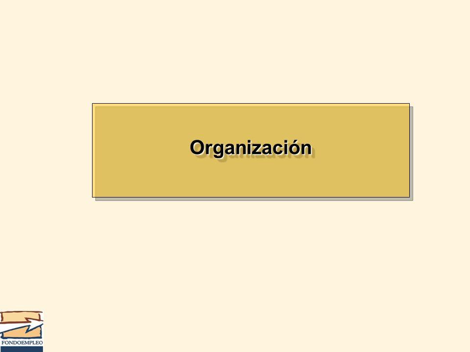 Organización 79