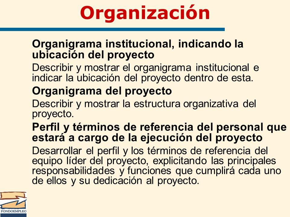 Organización Organigrama institucional, indicando la ubicación del proyecto.