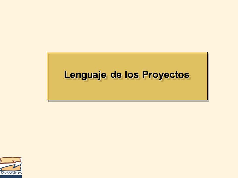 Lenguaje de los Proyectos