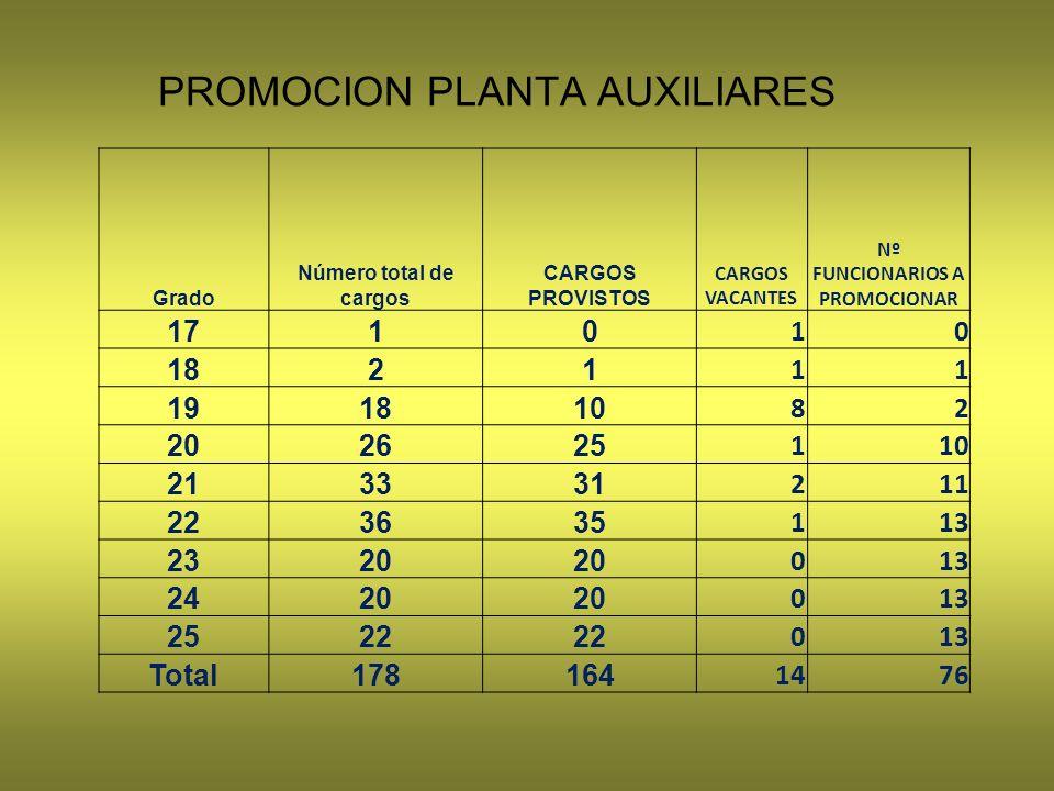 PROMOCION PLANTA AUXILIARES