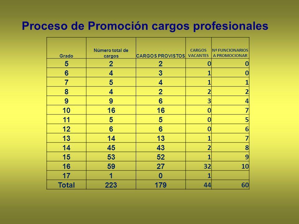 Proceso de Promoción cargos profesionales