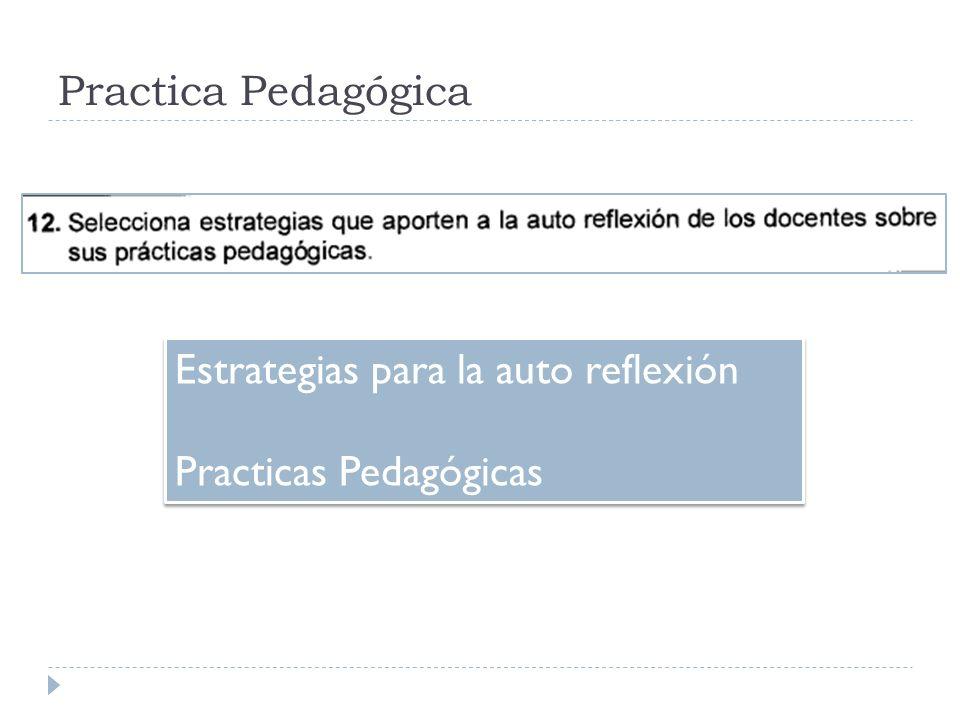 Practica Pedagógica Estrategias para la auto reflexión Practicas Pedagógicas