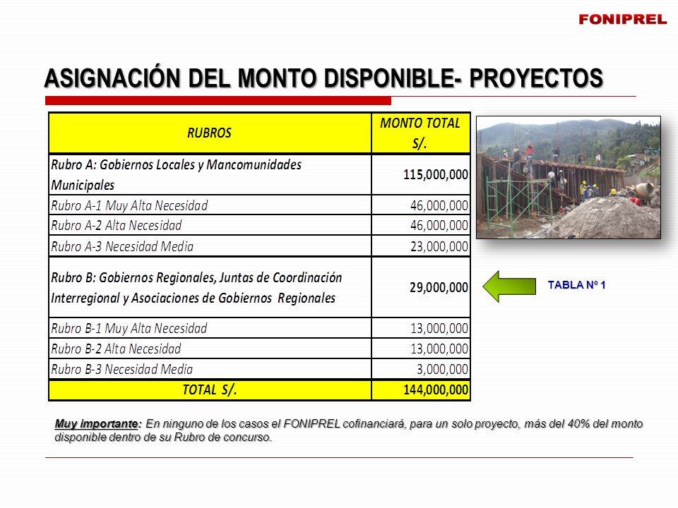 ASIGNACIÓN DEL MONTO DISPONIBLE- PROYECTOS