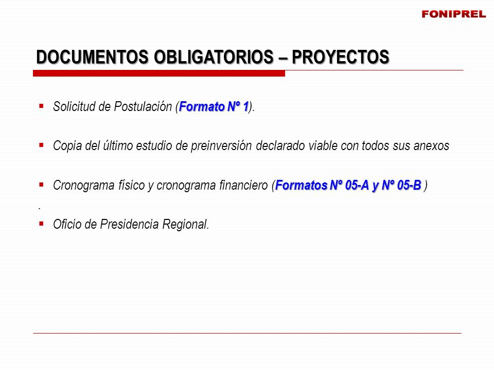 DOCUMENTOS OBLIGATORIOS – PROYECTOS