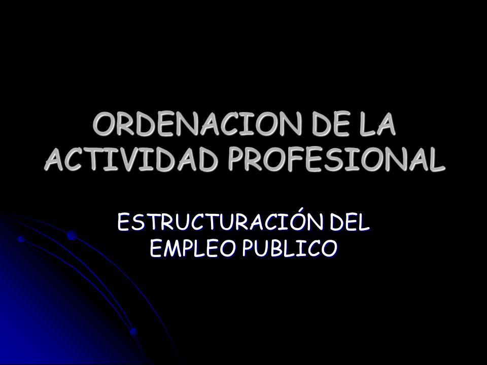 ORDENACION DE LA ACTIVIDAD PROFESIONAL