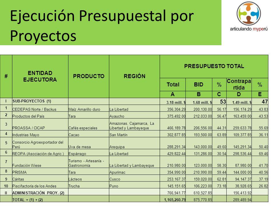 Ejecución Presupuestal por Proyectos