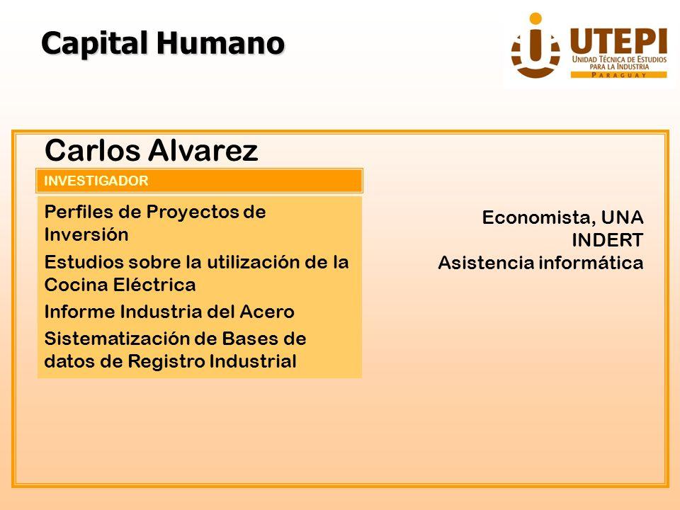 Capital Humano Carlos Alvarez Perfiles de Proyectos de Inversión