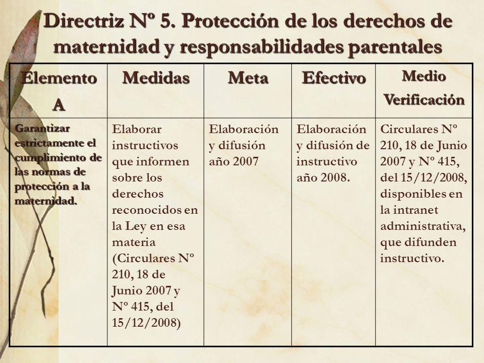 Directriz Nº 5. Protección de los derechos de maternidad y responsabilidades parentales