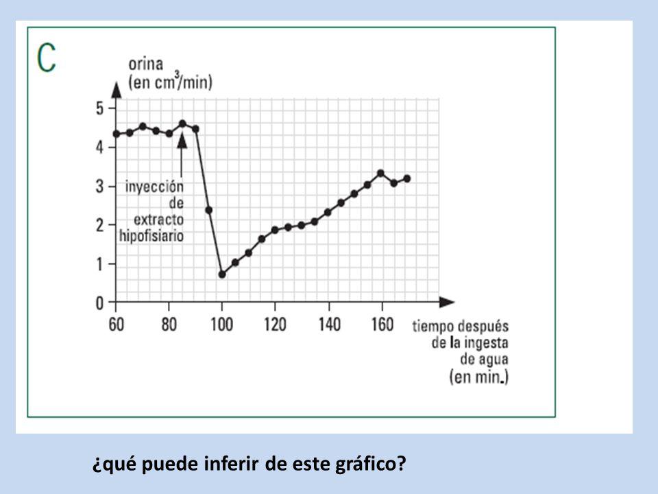 ¿qué puede inferir de este gráfico