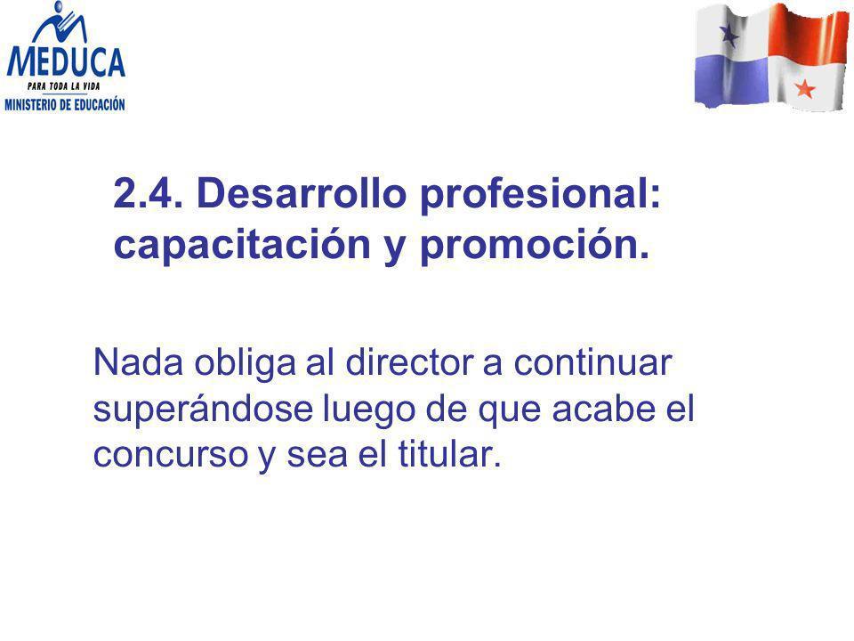 2.4. Desarrollo profesional: capacitación y promoción.