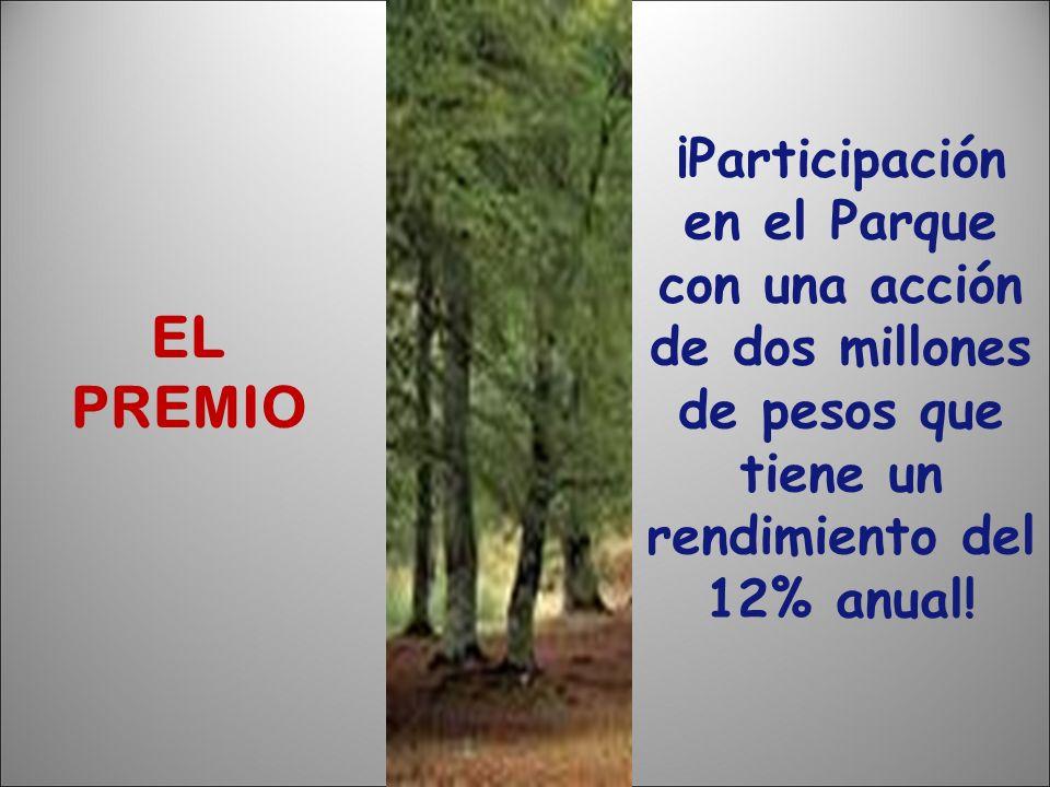 ¡Participación en el Parque con una acción de dos millones de pesos que tiene un rendimiento del 12% anual!