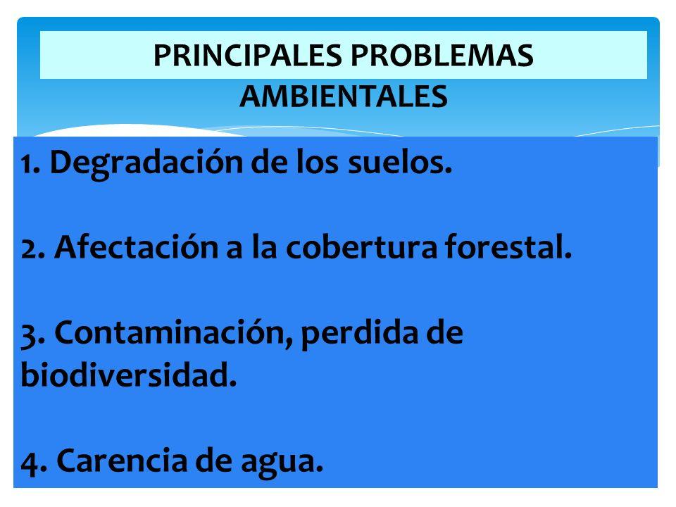 PRINCIPALES PROBLEMAS AMBIENTALES
