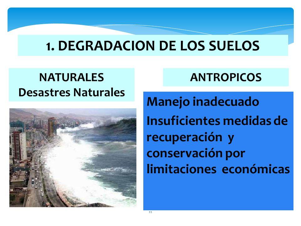 1. DEGRADACION DE LOS SUELOS