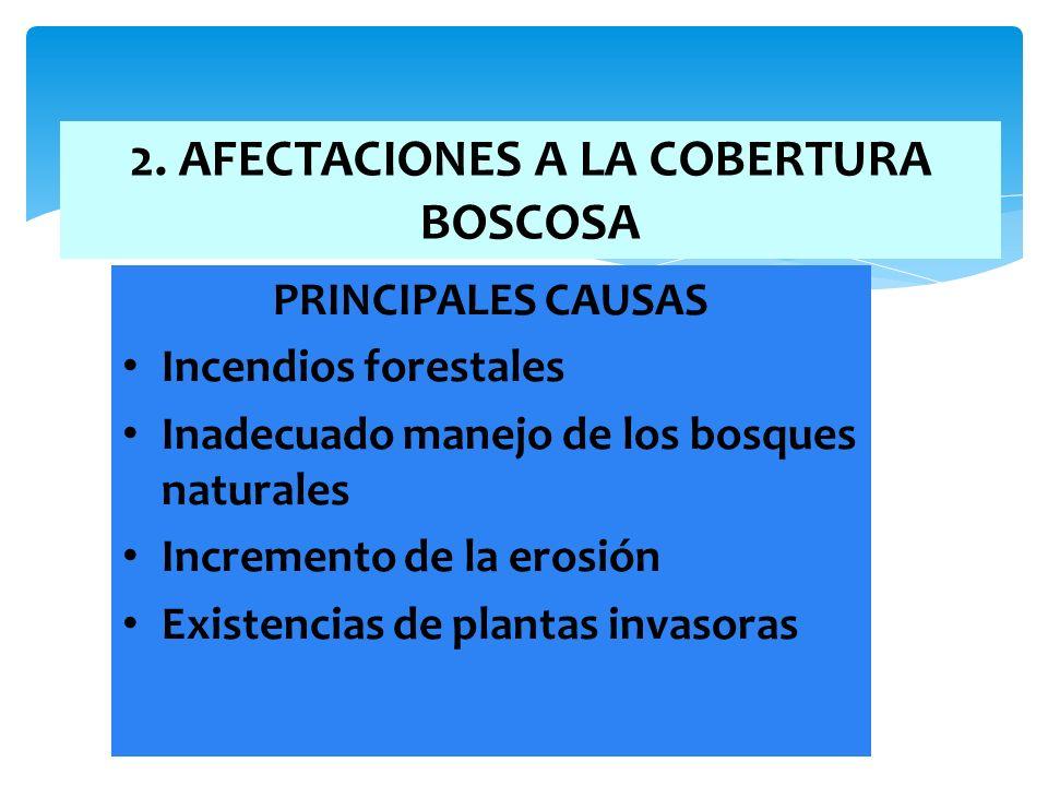 2. AFECTACIONES A LA COBERTURA BOSCOSA