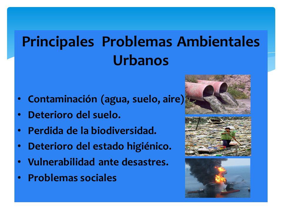 Principales Problemas Ambientales Urbanos