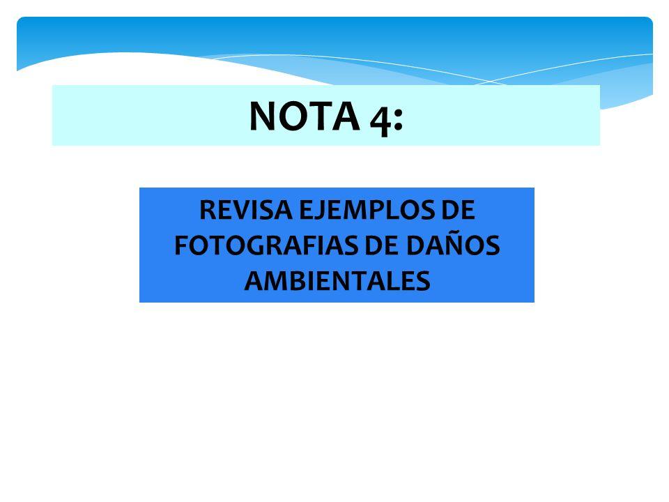 REVISA EJEMPLOS DE FOTOGRAFIAS DE DAÑOS AMBIENTALES
