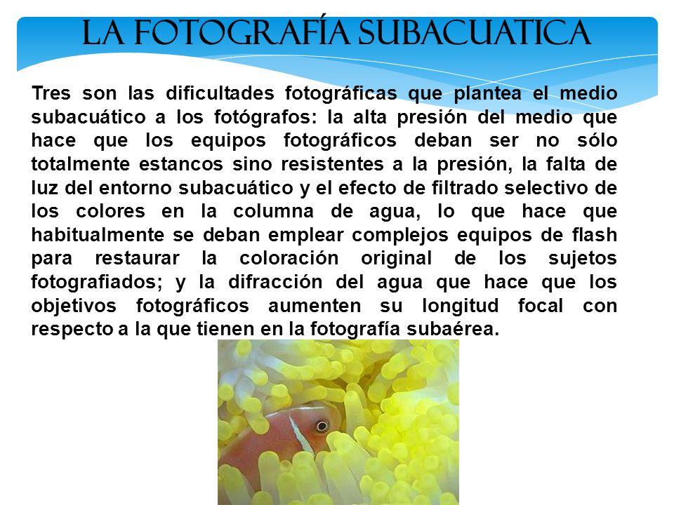 La Fotografía SUBACUATICA