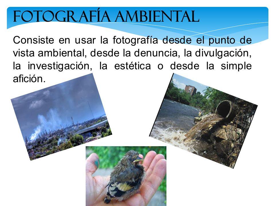 FOTOGRAFÍA ambiental