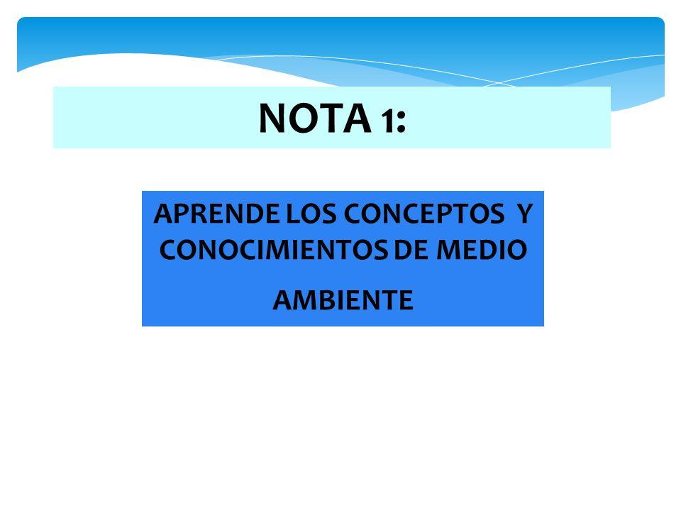 APRENDE LOS CONCEPTOS Y CONOCIMIENTOS DE MEDIO AMBIENTE