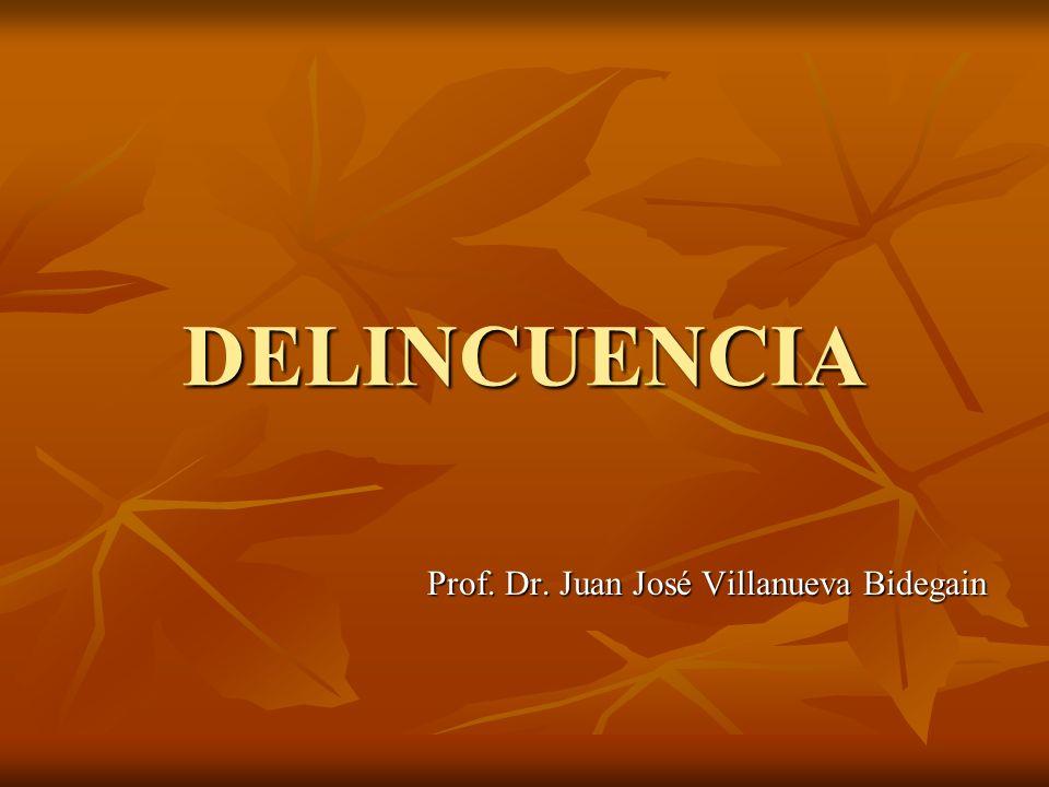 Prof. Dr. Juan José Villanueva Bidegain
