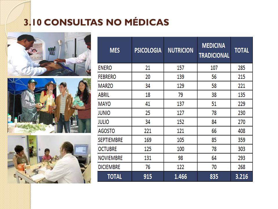3.10 CONSULTAS NO MÉDICAS