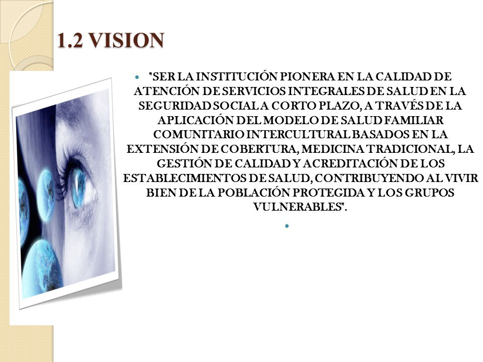 1.2 VISION