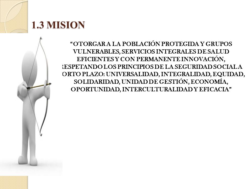 1.3 MISION