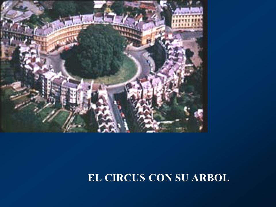 EL CIRCUS CON SU ARBOL