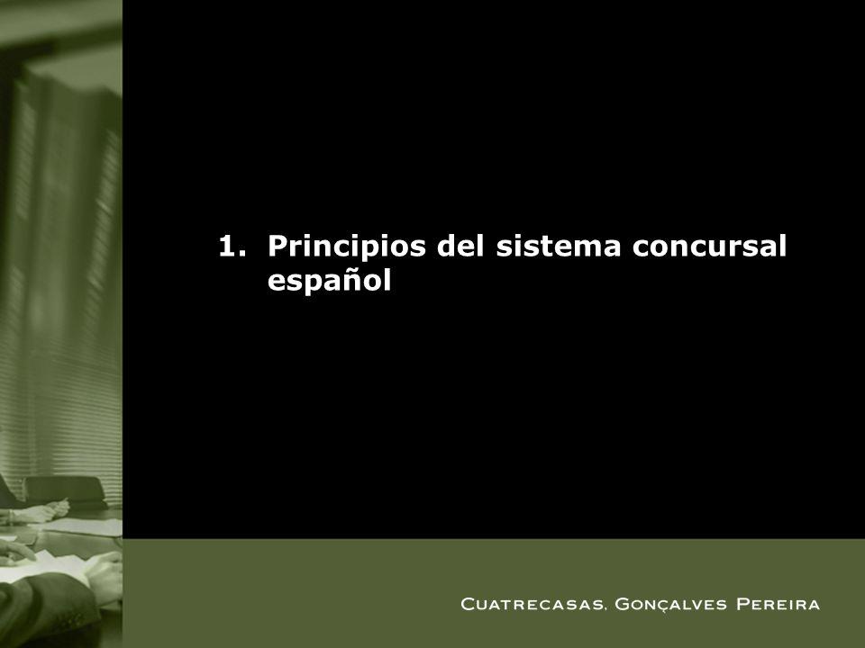 Principios del sistema concursal español