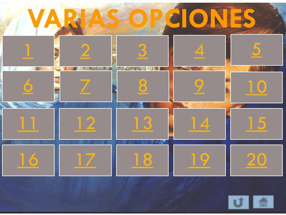VARIAS OPCIONES 1 2 3 4 5 6 7 8 9 10 11 12 13 14 15 16 17 18 19 20