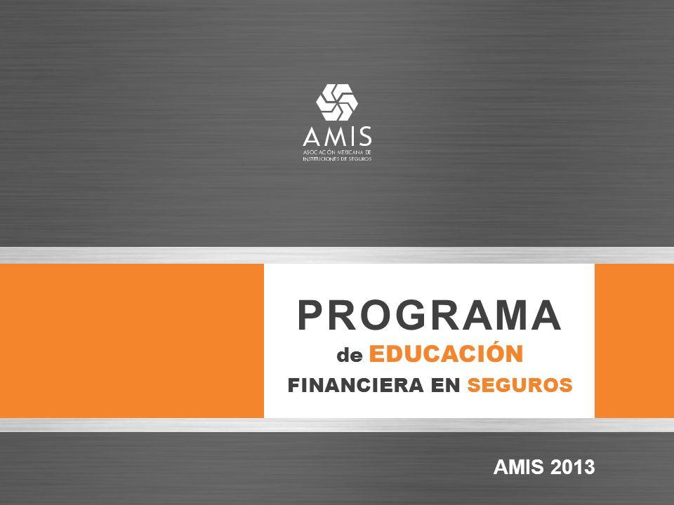 PROGRAMA de EDUCACIÓN FINANCIERA EN SEGUROS AMIS 2013