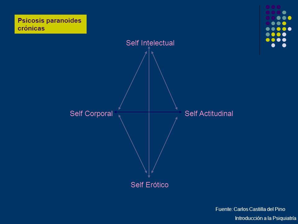 Self Erótico Self Intelectual Self Corporal Self Actitudinal