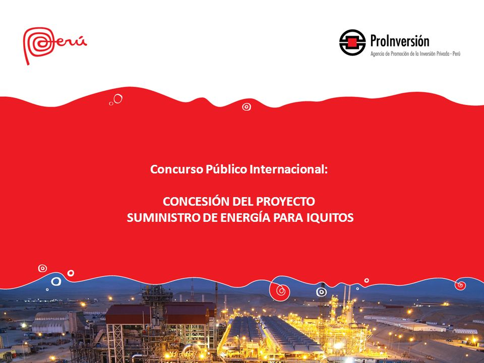 Concurso Público Internacional: CONCESIÓN DEL PROYECTO
