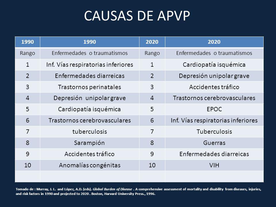 CAUSAS DE APVP 1 Inf. Vías respiratorias inferiores