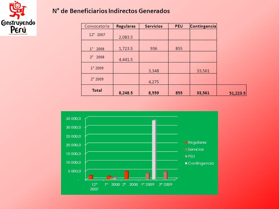 N° de Beneficiarios Indirectos Generados